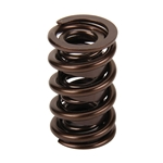 Comp Cams Valve Spring 1.55 Set