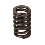 GM 602 Valve Springs Set