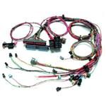 1999-2002 GM LS1 Engine Harness Extended