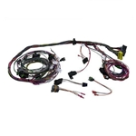 Painless Wiring 60103 1990-92 GM TPI Speed Density Engine Harness