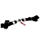 Simpson Bolt-In Lap Belts, Cam Lock, Pull-Down
