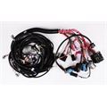 Speedway 2005-2006 LS2/4L65E Wiring Harness