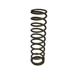 Garage Sale - Landrum 12 Inch Coilover Springs