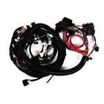 Speedway 2007-2008 LS2/LS3/LS7 Engine Wiring Harness