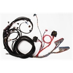 Speedway 1999-2002 LS1 Engine Wiring Harness, Extended