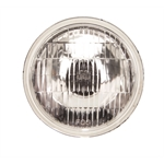 Replacement 6 Volt Fog Light Bulb, Clear