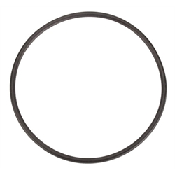 Winters Performance 7474 Seal Plate O-Ring