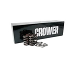 Garage Sale - Crower New Premium Valve Springs and Retainers