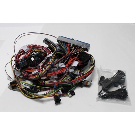 99-02 LS1 ENGINE HARNESS