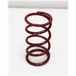 Garage Sale - Eibach Front Racing Springs, 5 x 9-1/2 Inch, 250 lbs.