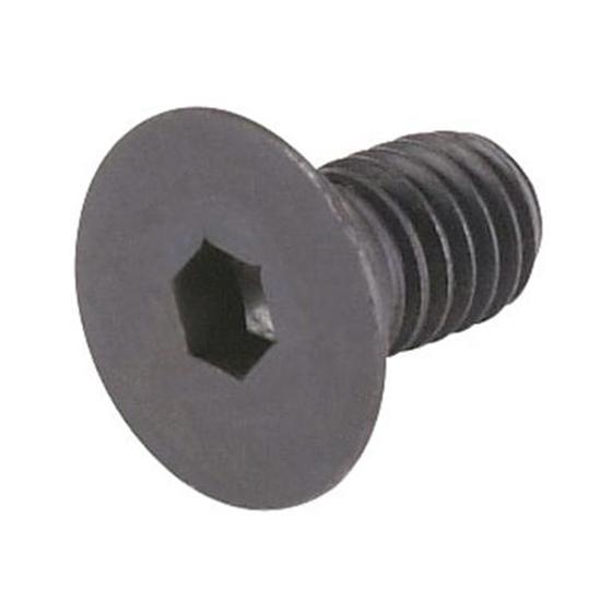 Flat Head Cap Screw - 12 Pieces