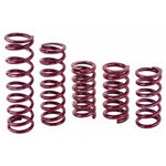 Eibach Front Racing Springs 5 Inch x 9-1/2 Inch