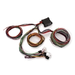 12 circuit wire harness