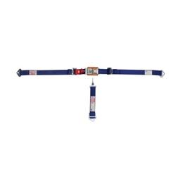 Garage Sale - Simpson 5-Point, Bolt In, Quarter Midget Lap/Sub Belts, Blue