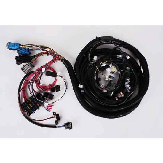 speedway 2005-2006 ls2/4l65e wiring harness, extended ... gm wiring harness diagram radio ls2 engine gm wiring harness