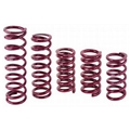 Eibach Rear Racing Springs - 5 Inch x 11 Inch