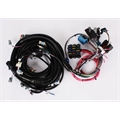 Speedway 2005-2006 LS2 Wiring Harness