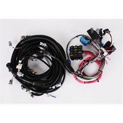 speedway 1994 1997 lt1 engine wiring harness free. Black Bedroom Furniture Sets. Home Design Ideas