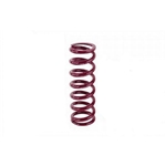 Eibach Front Racing Springs - 5-1/2 Inch x 9-1/2 Inch