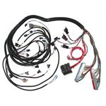 Engine Control Module Wiring Harnesses