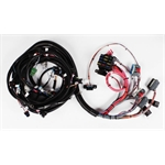Speedway 1994-1997 LT1 Engine Wiring Harness
