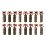 Header Bolts, 3/8-16 x 3/4 Inch, Set/16