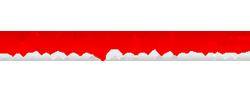 Digitails Logo